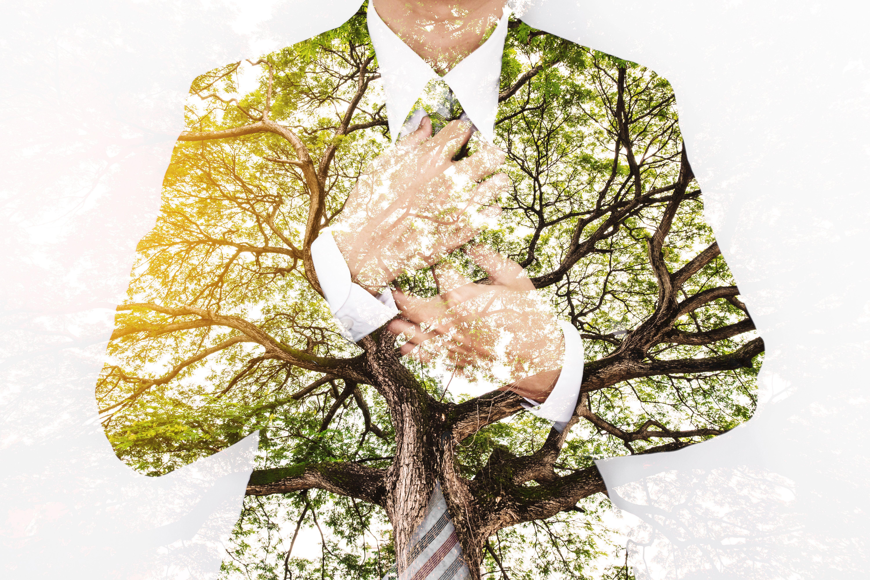 Kurier Jobinitiative Chancen 2020 - Green Jobs